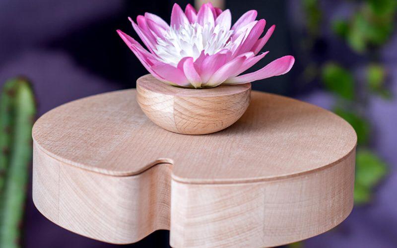 Wooden design shelves - winx Flora
